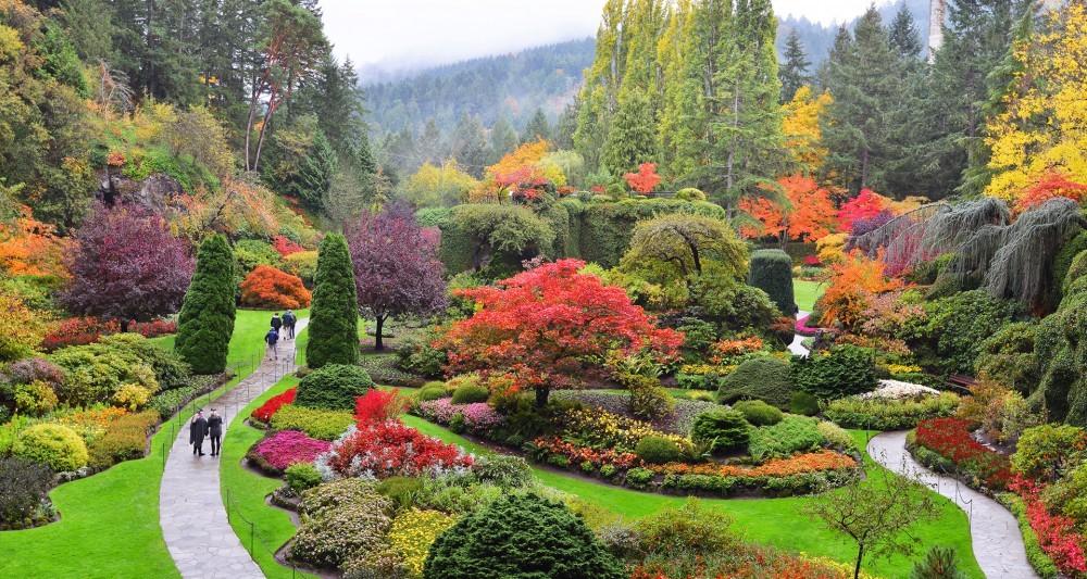 Butchart Gardens to host Serena Ryder, Jim Cuddy this summer | CTV News