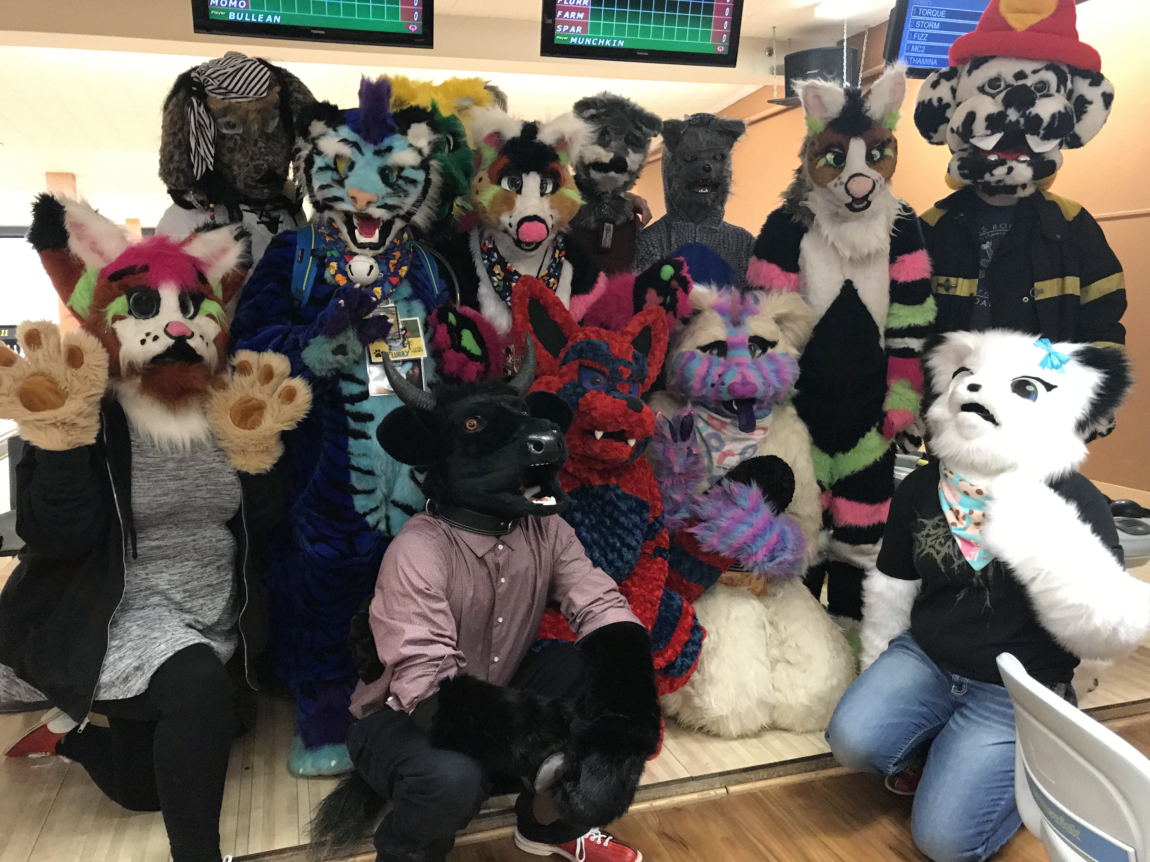 Not just a costume: A look at Regina's furry community | CTV