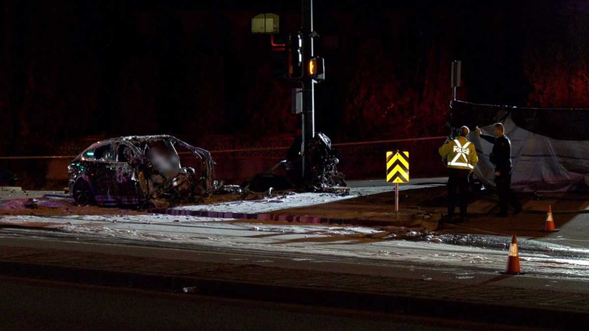 Driver dead after Tesla crashes into pole on Lougheed Highway | CTV News