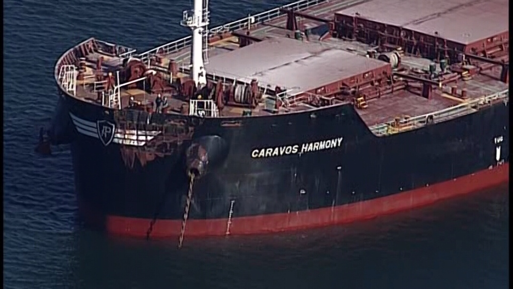 TSB investigating cargo ship collision in Vancouver Harbour