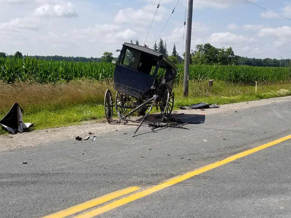 Three children, one man sent to hospital after van hits horse and