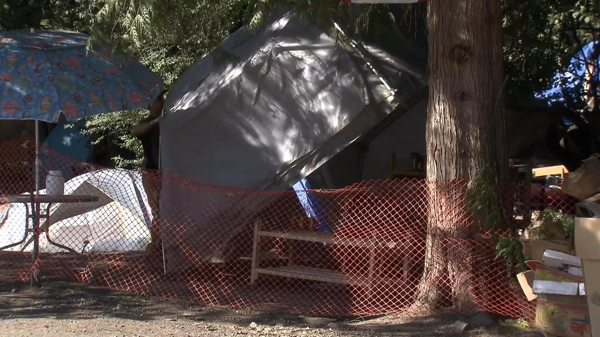 Maple Ridge Dump >> Maple Ridge Homeless Camp Taken Down Ctv News