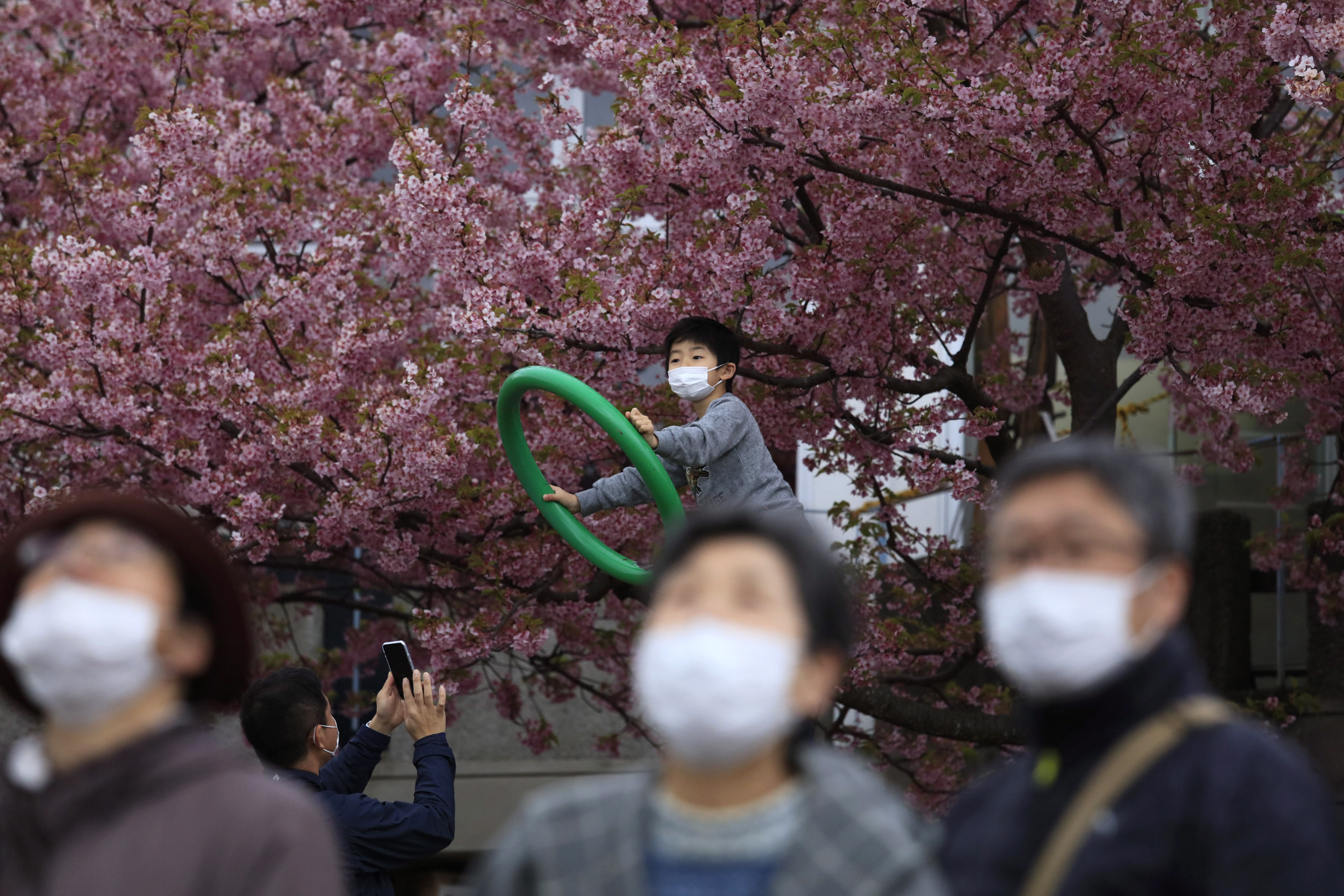 blossom surgical mask