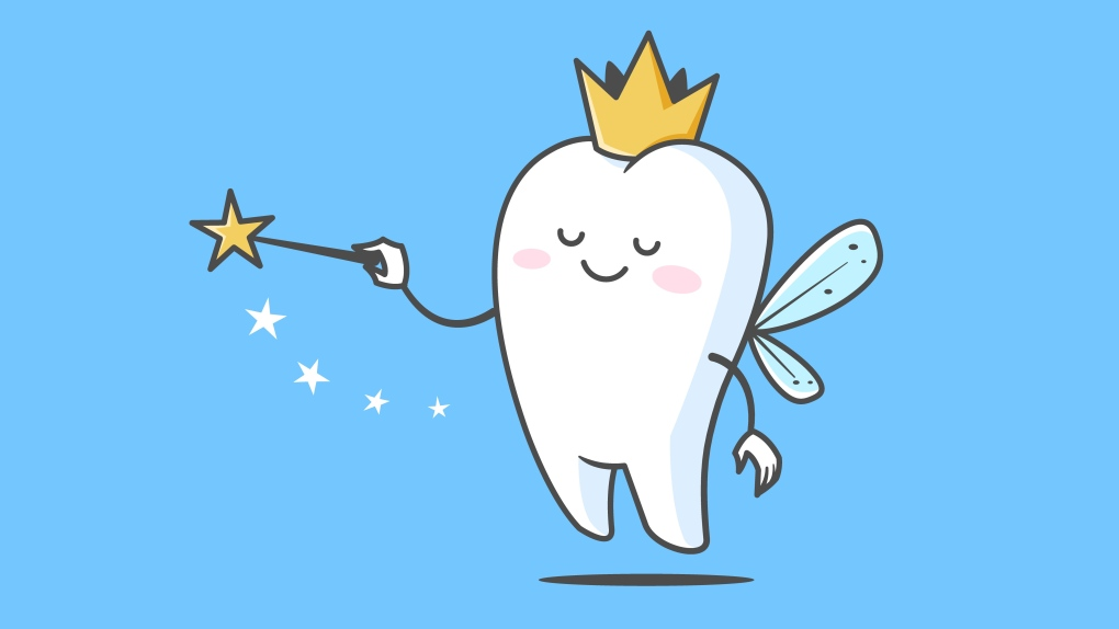 Tooth Fairy Granted Special Travel Exemption By Horgan Ctv News