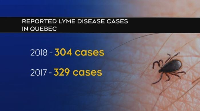 Lyme disease declines in Quebec, but Eastern Townships a hot spot