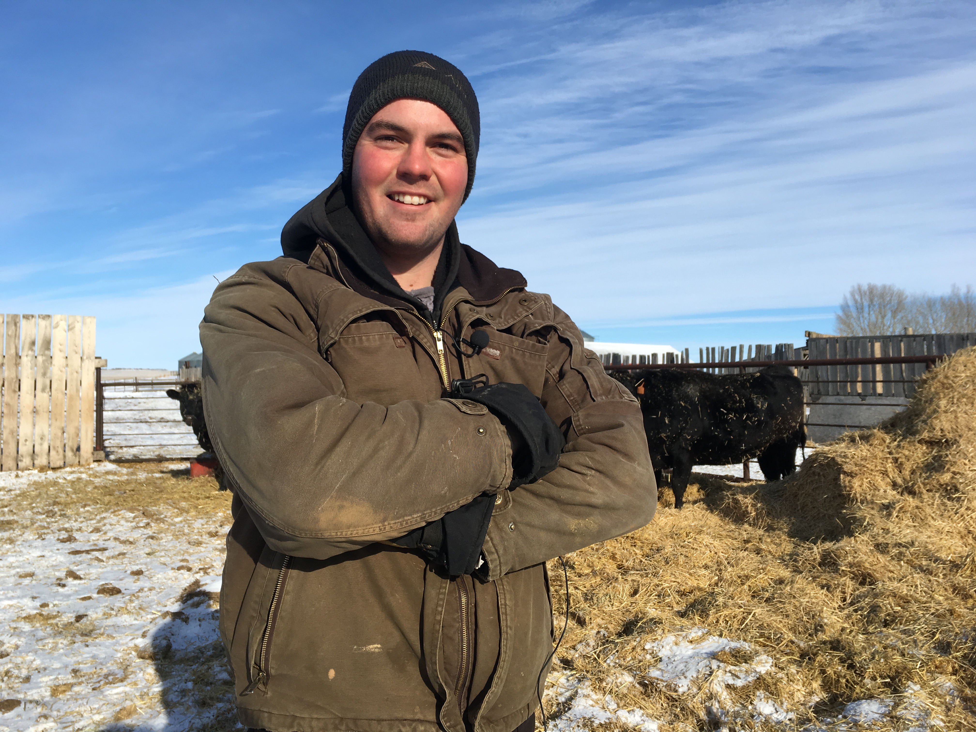 Ian Crosbie poses with his cattle on his Caronport farm
